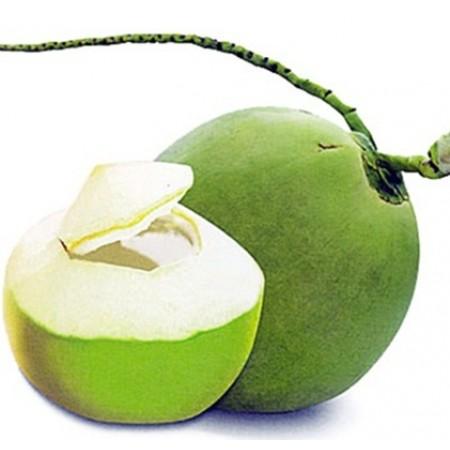 Baby Coconut